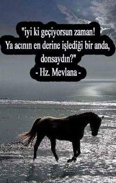 Hz.Mevlana (k.s) Strong Love, Charles Bukowski, Sufi, Hadith, Happy Campers, Beautiful Words, Cool Words, Karma, Favorite Quotes