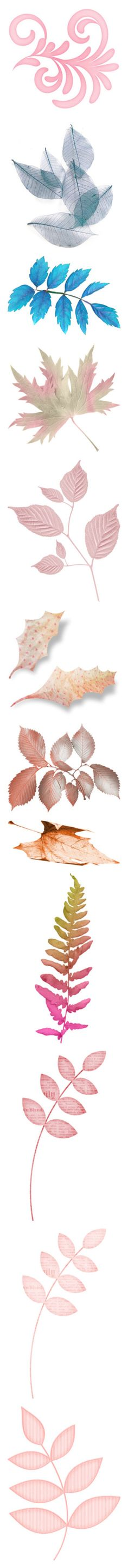 """Pastel Colored Leaves"" by judymjohnson ❤ liked on Polyvore featuring backgrounds, filler, flowers, plants, leaves, effect, autumn, fall, fillers and pink"