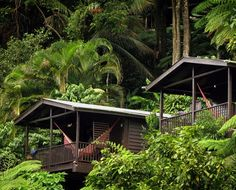 Dominica's Hotels and Resorts