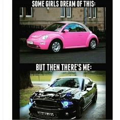 I'd take a mustang over a bug any day. but a mustang. Ford Mustang Coupe, Shelby Mustang, Shelby Gt500, Mustang Girl, Ford Mustangs, Mustang Meme, Pink Mustang, Shelby Car, Sexy Autos
