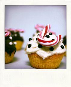 Par Charlotte Vanier pour le Buzz de Phosphore 366, les cupcakes de Noël.