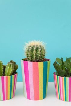 Add some color to your garden with this DIY tissue-covered pot.