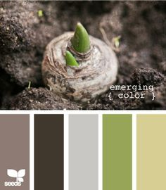emerging color - green and taupe (or grey) for master bedroom?