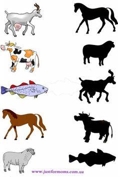 anasınıfı hayvanlarla ilgili gölge eşleştirme çalışmaları (8)