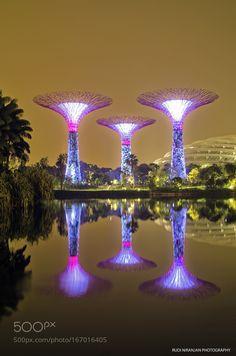 Happy 51st Birthday Singapore... by Stills_Studio. Please Like http://fb.me/go4photos and Follow @go4fotos Thank You. :-)
