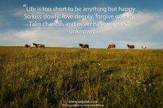 #health #SIRPA #quote #horse #landscape #inspirational