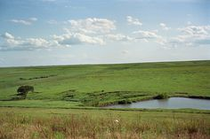 The Tallgrass Prairie Preserve in Kansas