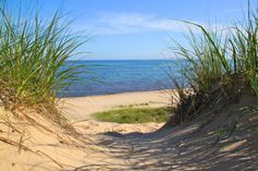 How to best enjoy Indiana Dunes State Park | Chesterton News ...