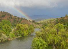 Klamath River Rainbow - Hornbrook, California