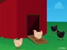 1 Transfira os pintinhos para um galinheiro ao ar livre. Quando os filhotes tiverem cerca de dois meses de idade, você pode movê-los para uma gaiola ao ar livre, desde que não seja em uma estação muito fria. As gaiolas podem ser compradas em lojas de materiais agrícolas, ou você pode construir sua própria. A gaiola fornece abrigo para os pintinhos, protegendo-os das correntes de ar e de predadores. Mantém assim os pintinhos aquecidos no inverno e refrescados no verão. Há várias considerações…