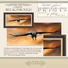"""""""Breakthrough"""" Limited Edition Bald Eagle framed art, now available in an edition of 12 prints.  http://www.jaiart.com/limited-edition-prints"""