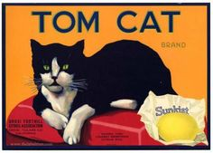 TOM CAT Vintage Tulare County Lemon Crate Label
