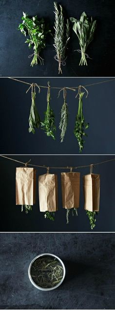 How to dry your herbs.