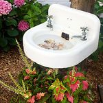 Birdbath from sink