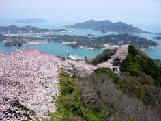 【愛媛県】積善山 《Photo.1》⇒ http://www.pinterest.com/pin/540854236471414764/ 《Photo.2》⇒ http://www.pinterest.com/pin/540854236471414767/ #Ehime_Japan #Setouchi