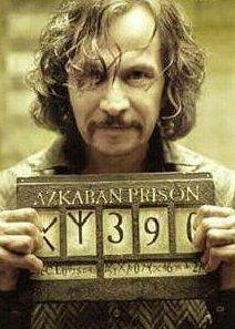 Harry Potter: Azkaban Prison - Sirius Black