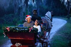 Holiday Sleigh Rides at Fort Wilderness Resort and Campground | Chip and Co