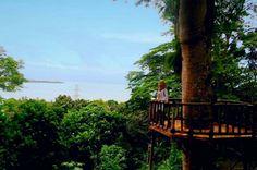 YU VISIT PANDEGLANG: Wisata Alam Pesanggrahan, Tahura Carita, Pandeglan...