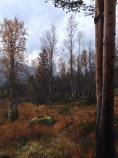 Autumn in Norge