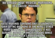 """We already have 'Medical' Marijuana. It's called 'Marinol'.  FALSE: Marinol contains only a tynthetic form of THC and none of the herb's other more beneficial cannabboids. It has already caused 4 toxicity deaths, while MJ still hasn't killed anyone."