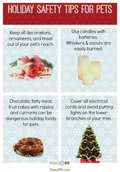 Please share our #holiday safety tips for #pets!