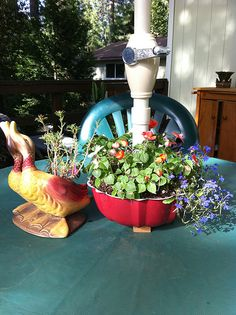 bundt cake pan planter