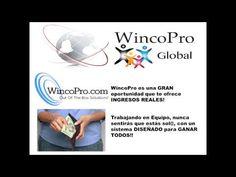 Nuevo Testimonio de Ganancias en WINCOPRO | Wincopro Global