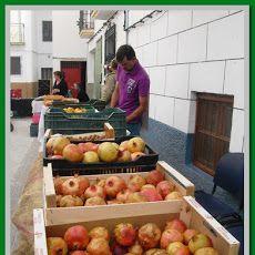Cómete El Valle. Este interesante mercado de productos del Valle de Lecrín se celebra dos domingos de cada mes, el primero en Melegís y el tercero en Nigüelas.