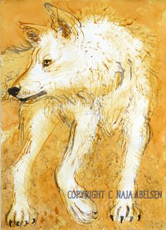 Hvidulven (White Wolf). Water colour by Naja Abelsen. abelsen.dk (sold). Available as A3-photoprint 400 DKK / 54 Euro.