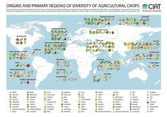 Cette carte vous informe sur la région d'origine des fruits et légumes que vous achetez