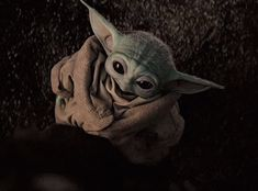 Baby Yoda The Mandalorian GIF BabyYoda TheMandalorian Cute Discover & Share Yoda Gif, Yoda Meme, Yoda Funny, Star Wars Baby, Star Citizen, Yoda Images, Yoda Pictures, Baby Animals, Cute Animals