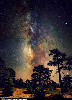 funny science news experiments memes - Deep Space, Deep in the Forest