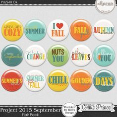 Project 2015 September - Flair Pack from Designs by Connie Prince