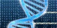 Horizontal Gene Transfer a Hallmark of Animal Genomes  on The Scientist