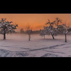 Jonschwil SG #landschaft Snow, Outdoor, Scenery, Outdoors, Outdoor Living, Garden, Eyes