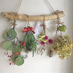 ドライフラワー流木クリスマスガーランド(ドライフラワー)が通販できます。丸い葉が可愛いユーカリポポラスを流木に吊るしてみました♡*・゜゜・*:.。..。.:*・'(*゜▽゜*)'・*:.。..。.:*・゜゜・*すべてナチュラルな素材で雰囲気を柔らかくしてくれます。クリスマスにリビングや玄関に飾って癒されてみませんか╰(*´︶`*)╯♡素人のハンドメイドの作品になります。♪流木の長さ約30㎝スワッグの長さ約16〜23㎝麻紐の長さ約20㎝♪材料ユーカリポポラス、水無月スターチス、シランの実ローズヒップ、スギ、セージナンキンハゼ、ふうせんカズラセンニチコウ、木の実ドライフラワーは繊細な為、配送中の花や葉の不具合の可能性があります。ご理解いただける方のご購入をお願いします。梱包用の箱や緩衝材はリサイクルのものを使用させていただきます。家にペット、喫煙者はおりません。他のサイトで売れた場合、削除させて頂きます。丁寧に迅速な対応を心がけています。よろしくお願いします(╹◡╹) Flower Embroidery Designs, Flower Designs, Leaf Flowers, Dried Flowers, Diy Fashion Hacks, Arte Floral, Nature Crafts, Diy Projects To Try, Flower Crafts
