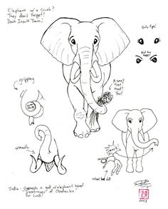 Draw an Elephant 2 part2 by ~Diana-Huang on deviantART