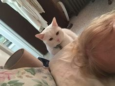 Sometime I think Snowball plots what he will do to me if I dont feed him.