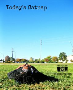 Today's Catnap Sky Walk, Green Grass, The Outsiders, Scenery, In This Moment, Blog, Landscape, Blogging, Landscapes