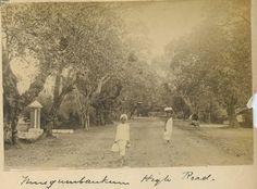 Vintage India, High Road, Fishing Villages, South India, 16th Century, Chennai, Historical Photos, Vintage Photos, Past