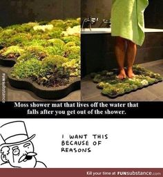 Moss shower mat - Shut up and take my money! Moss Bath Mats, Things To Buy, Things I Want, Take My Money, Cool Inventions, My New Room, Future House, Fun Facts, Life Hacks
