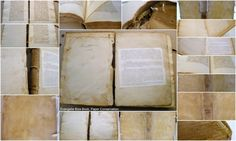 Conservation of Limp Vellum Binding Conservation, Paper, Books, Design, Libros, Book, Conservation Movement, Book Illustrations