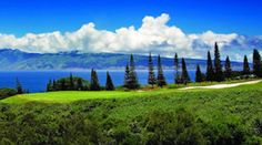 The natural beauty of Maui and the elements makes for a perfect vacation. The crystal blue waters and lush surroundings with the clear blue sky are just a few of the reasons more visitors come to Maui year after year. Call us today at (808) 665-1315!  #culture #beach #shoreline #ocean #waves #beachside #oceanviews #maui #hawaii #bigisland #hawaiianisland #livealoha #luckywelivehawaii #familygetaway #hawaiiliving #ohana #islandliving #vacation #paradise #dreamvacation