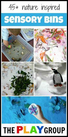 Sensory Bins to Explore Nature