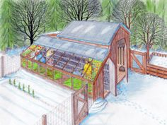 Cost-Effective Organic Gardening Tricks for a Rewarding Harvest DIY Greenhouse and Chicken Coop Plans Homesteading - The Homestead Survival .ComDIY Greenhouse and Chicken Coop Plans Homesteading - The Homestead Survival . Potager Bio, Greenhouse Gardening, Greenhouse Ideas, Small Greenhouse, Greenhouse Academy, Greenhouse Wedding, Hydroponic Gardening, Heated Greenhouse, Greenhouse Shelves