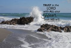 Trust the Lord with all your heart Prov 3:5-6 digital file by DesignVerses on Etsy used as overlay on original photography by Liane Brown.