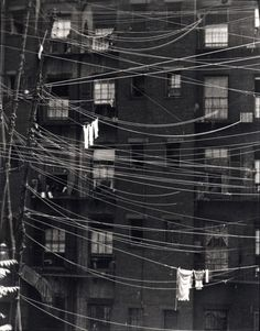 Clotheslines 1923, New York City, New York    by Ralph Steiner