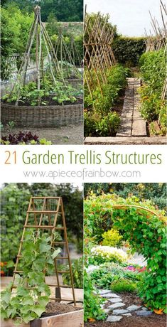 21 Easy DIY Garden Trellis Ideas & Vertical Growing Structures - Create enchanting garden spaces with 21 beautiful and DIY friendly trellis and garden structures, such as tunnels, teepees, pergolas, screens and more! – A Piece Of Rainbow - Vertical Gardens, Small Gardens, Vertical Planter, Diy Vertical Garden, Outdoor Gardens, Diy Jardim, Diy Trellis, Trellis Ideas, Bean Trellis