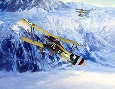 1918 07-07 76a Squadriglia Hanriot HD1 6239 Silvio Scaroni