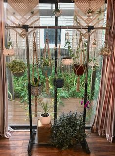 A community focused on the discussion, care, and well-being of houseplants! Deco Zen, Deco Nature, Inside Plants, Room With Plants, Indoor Garden, Indoor Plants, Home And Garden, Plant Aesthetic, Aesthetic Room Decor